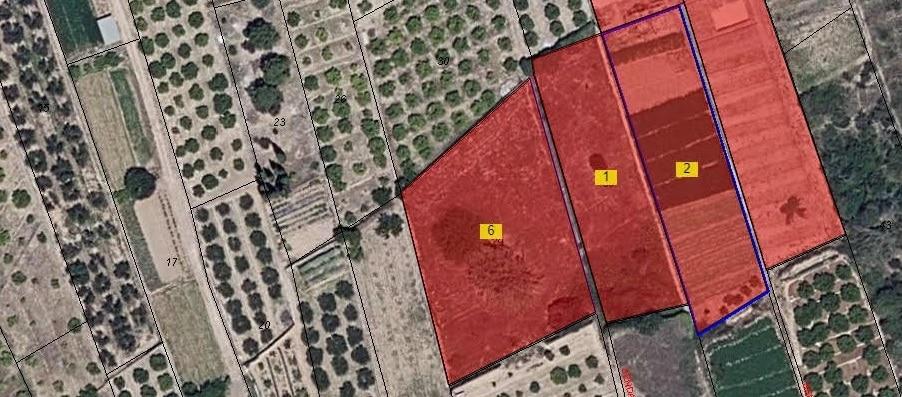 agrupacion segregacion plano georreferenciado catastro